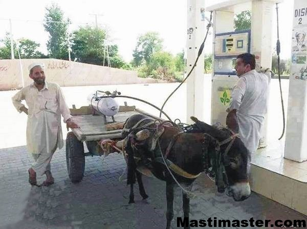 cng-gas-driven-funny-donkeyfbmasti-in