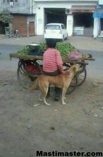Indian Funny Pic for Whatsapp Group - mastimaster com
