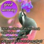 Whatsapp Hindi Good Morning Image