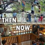 Summer Holidays Then & Now