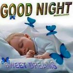 Baby Good Night Photo