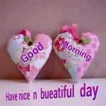 Good Morning Have a nice Day Pic