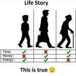 Life Story – Life Pic for WhatsApp